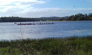 Cooroy Dragon Boat Race 06 May 2018